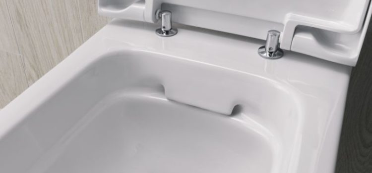 WC školjke bez unutarnjeg ruba omogućuju maksimalnu higijenu