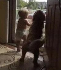 VIDEO: Najveseliji doček koji možete poželjeti