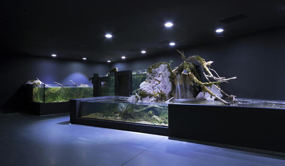 3lhd_224_karlovac_aquarium_photo_by_jure_zivkovic_0x