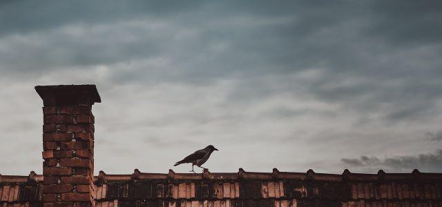 Što učiniti kada fasadni BOJLER u višestambenoj zgradi otkaže poslušnost, a novi se ne može nabaviti?