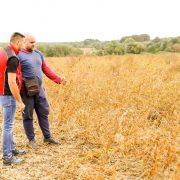 EKO POKUS ODUŠEVIO POLJOPRIVREDNIKE: Urod soje na tretiranom polju znatno veći od uroda bez tretmana