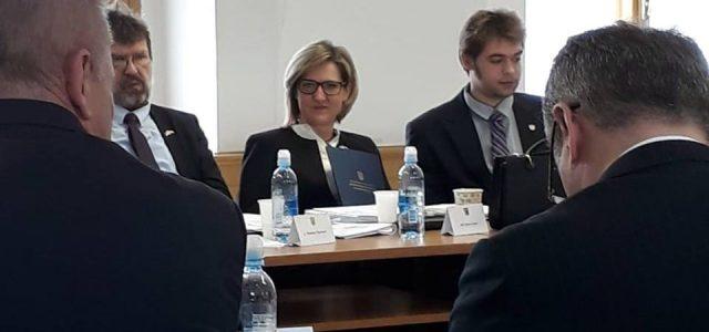 Milas: Želimo da hrvatska manjina u Srbiji dobije izravnu zastupljenost, kao što je ima srpska u Hrvatskoj
