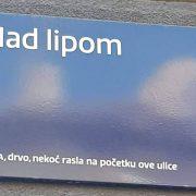 Slikali NEOBIČAN NATPIS te upozorili na NESTAJANJE DRVEĆA I ŠUMA u Zagrebu i okolici te u cijeloj Hrvatskoj