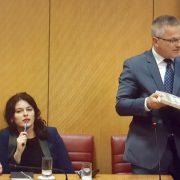NOVI ZAKON: I vladajući i oporba podržali pojednostavljenje STJECANJE DRŽAVLJANSTVA za hrvatske iseljenike