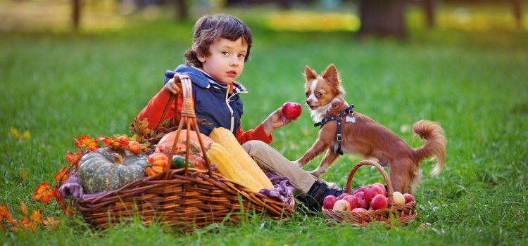 Ljubimci znatno podižu kvalitetu života djece s razvojnim teškoćama