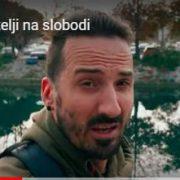 VIDEO Miletić: Zadrani, izađite na ulice i recite DOSTA lakrdiji od sudstva! Vukušić: Vrijeme je da se organiziramo!