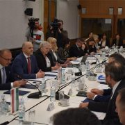 Hrvatska i Mađarska su uzor u pitanjima zaštite nacionalnih manjina u Europi
