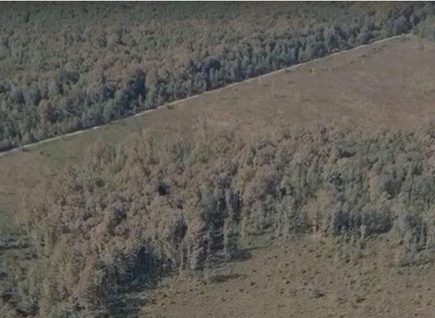 Ugledni austrijski EU-parlamentarac pozvao EK da hitno istraži navode o korupciji u Hrvatskim šumama!