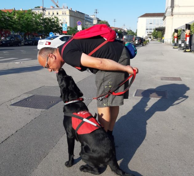 Nisu mogli psihijatri, a uspjelo psu Olani: umiljatošću i mirnoćom izliječila Zorana od PTSP-a
