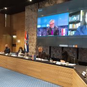 Izmjene Zakona o državljanstvu – ulaznica za rješavanje svih drugih zahtjeva Hrvata u iseljeništvu